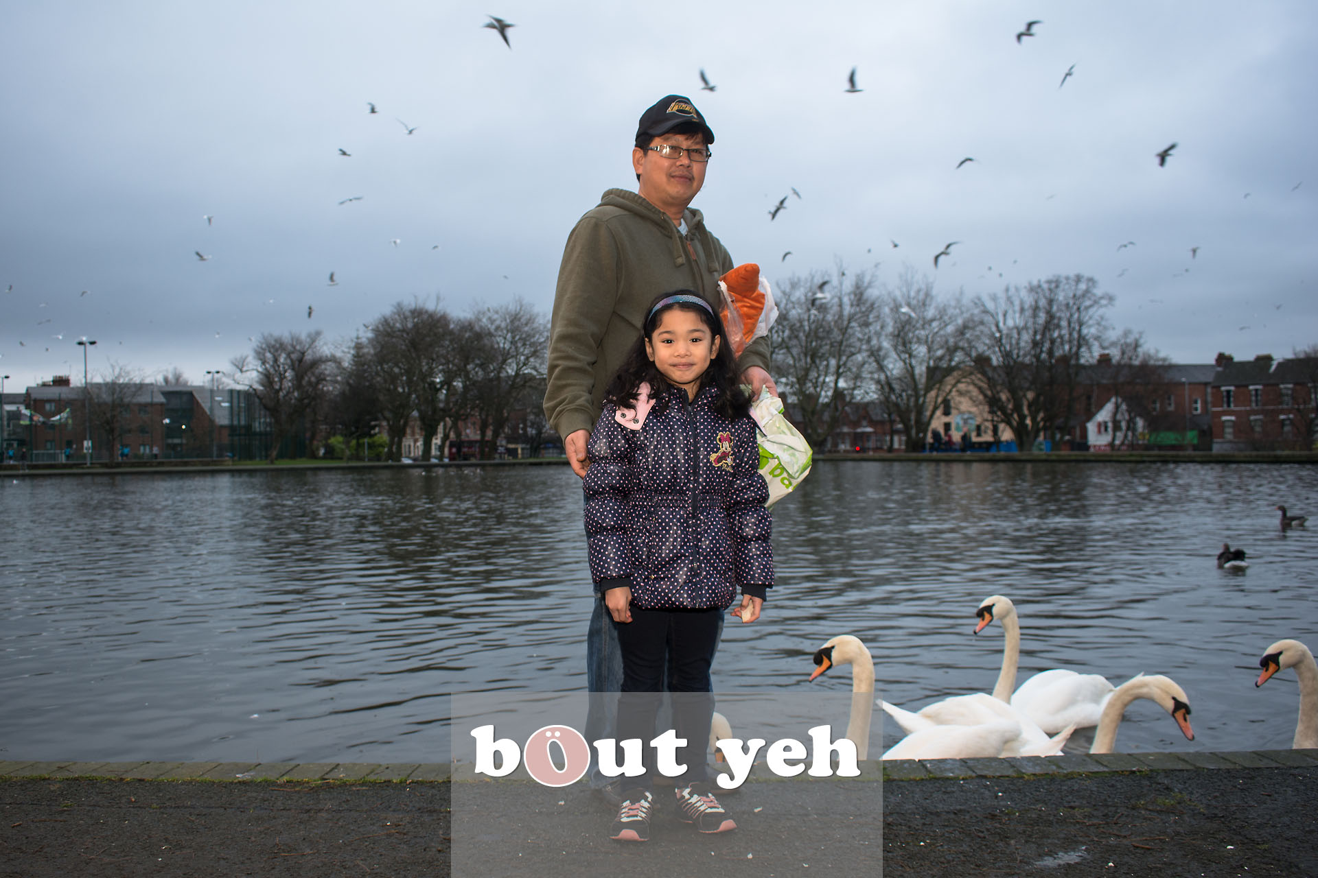 Young girl and father feeding swans at Waterworks, Belfast, Northern Ireland - bout yeh photographers Belfast photo 3967.