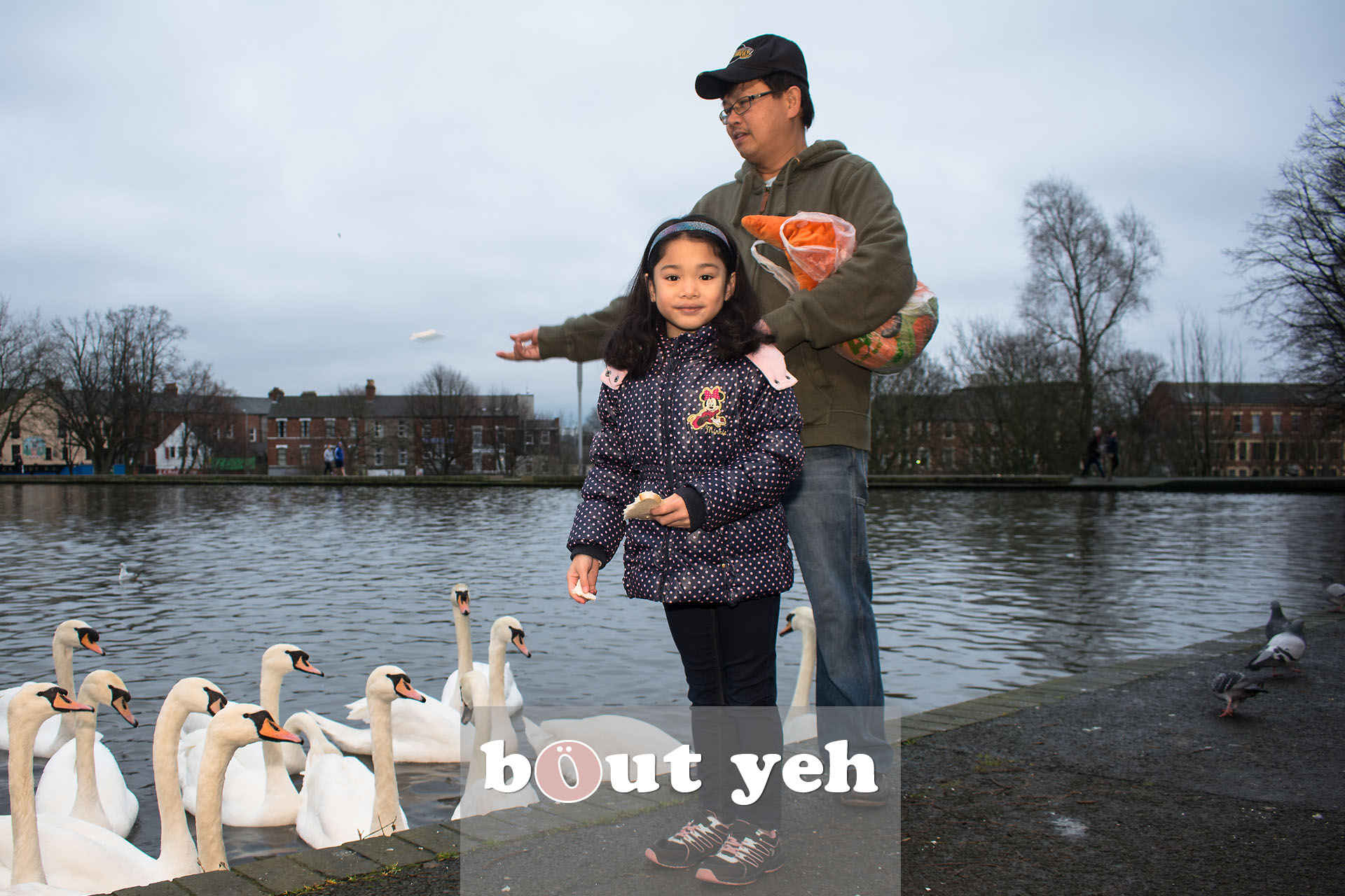 Young girl and father feeding swans at Waterworks, Belfast, Northern Ireland - bout yeh photographers Belfast photo 3971.