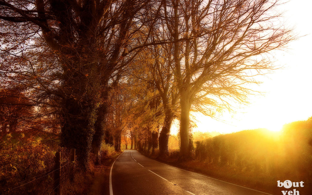 Autumnal Path, Donaghmore, County Tyrone – gh