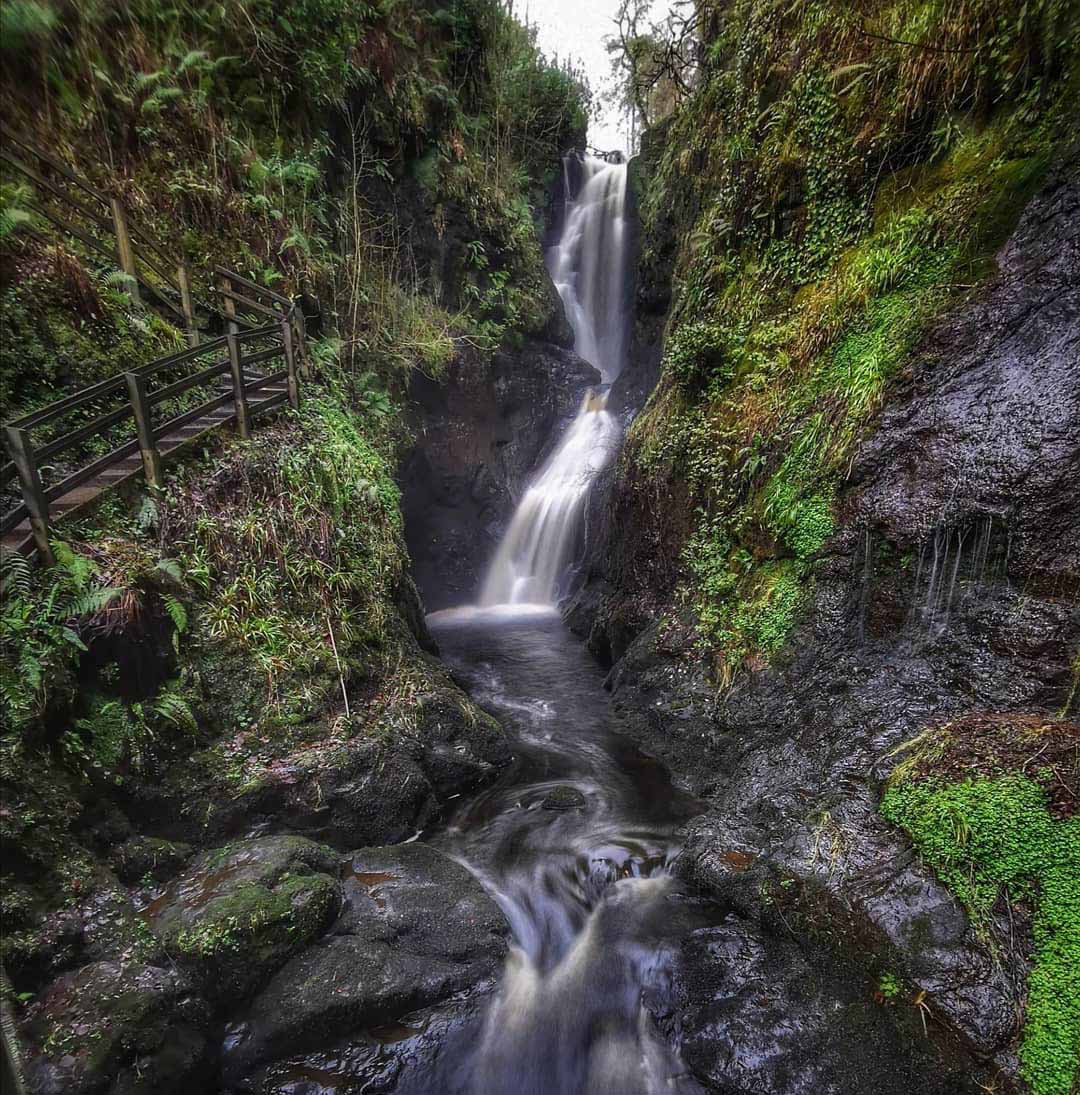 Glenariff Forest Park photo shared by Bout Yeh Photographers Belfast - IMG_5481