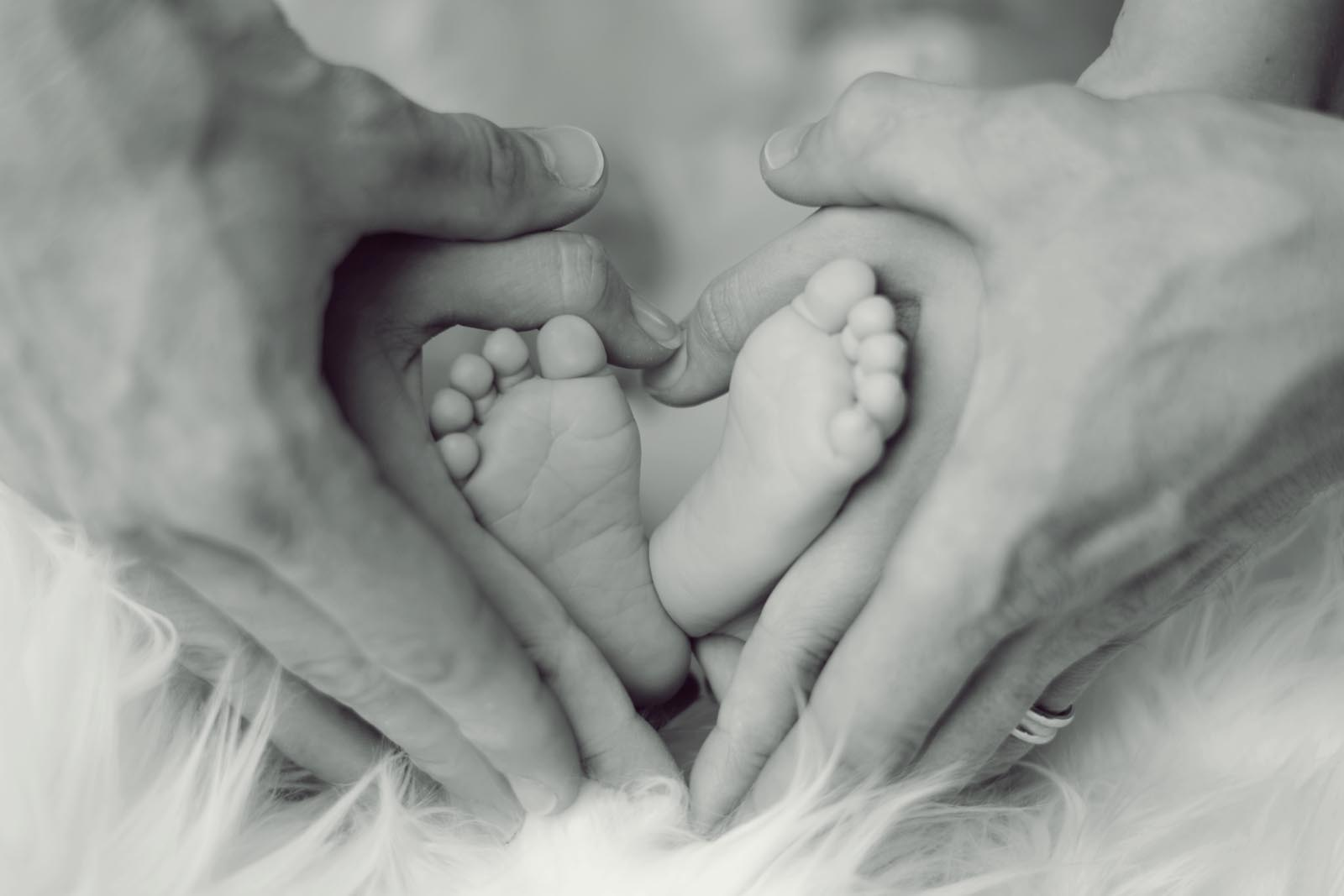 Baby and newborn photographers Belfast -  baby feet with father and mother hands 733881